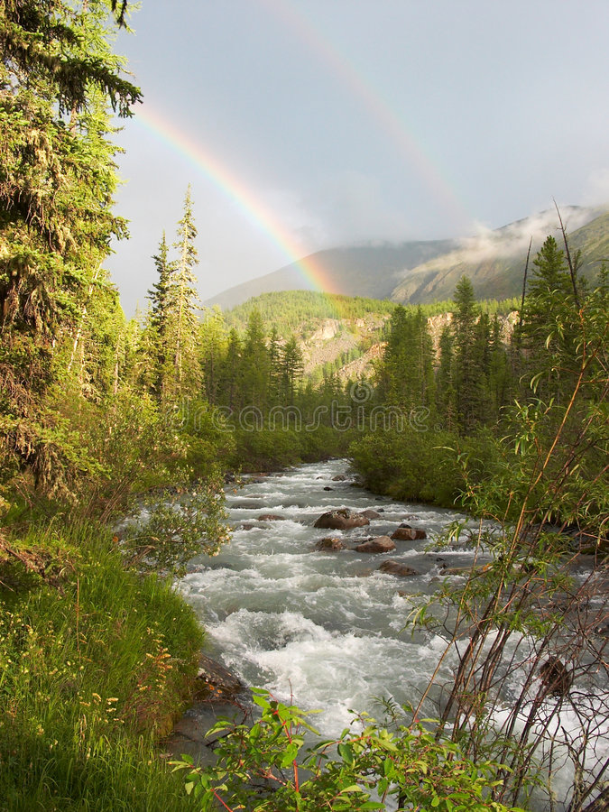 Download Double rainbow stock photo. Image of forest, cool, cold - 1212128