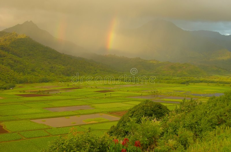 Download Double Rainbows, Hanalei Valley Stock Photo - Image of clouds, trees: 6344888