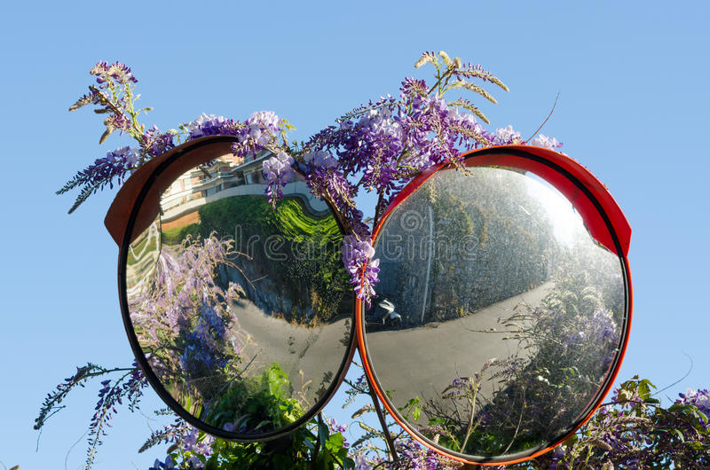 Double road mirror. With wisteria in spring stock image