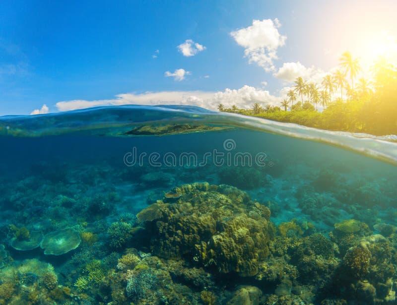 Double seaview Coral Reef sous-marine Au-dessus et au-dessous de la ligne de flottaison image libre de droits