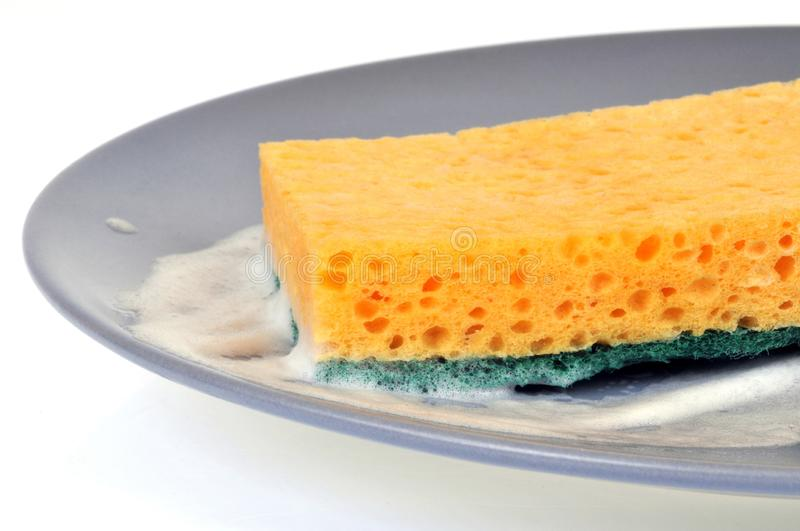 Double-sided sponge in a plate with foam royalty free stock images