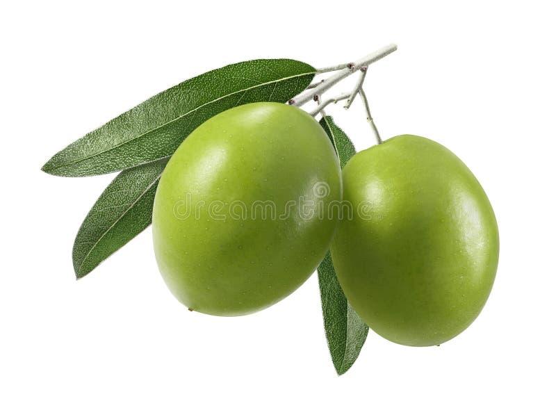 Doubles olives fraîches d'isolement sur le blanc photo stock