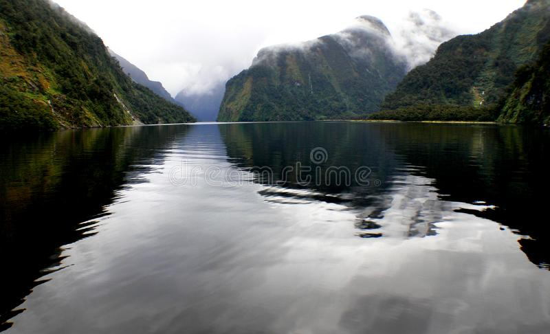 Doubtful Sound. New Zealand. royalty free stock image
