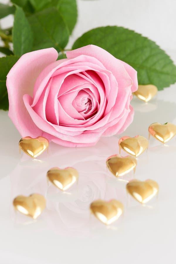 Doucement rose de rose et coeurs d'or images stock