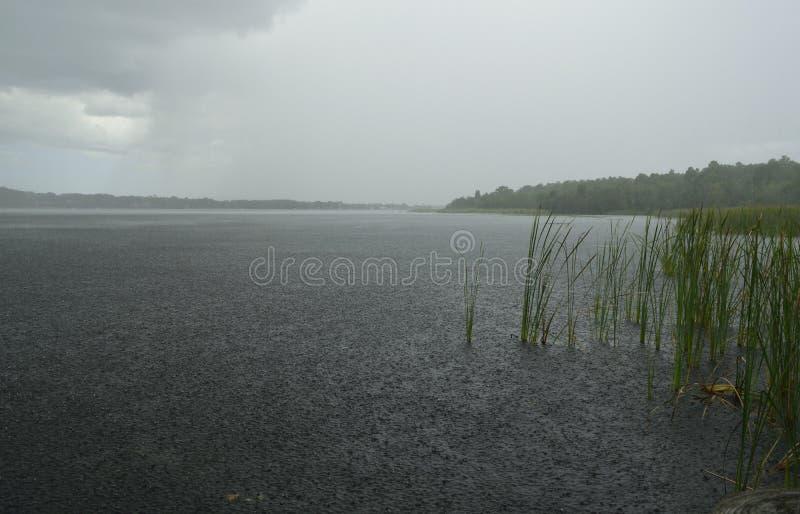 Download Douches de forte pluie image stock. Image du horizon - 77153841