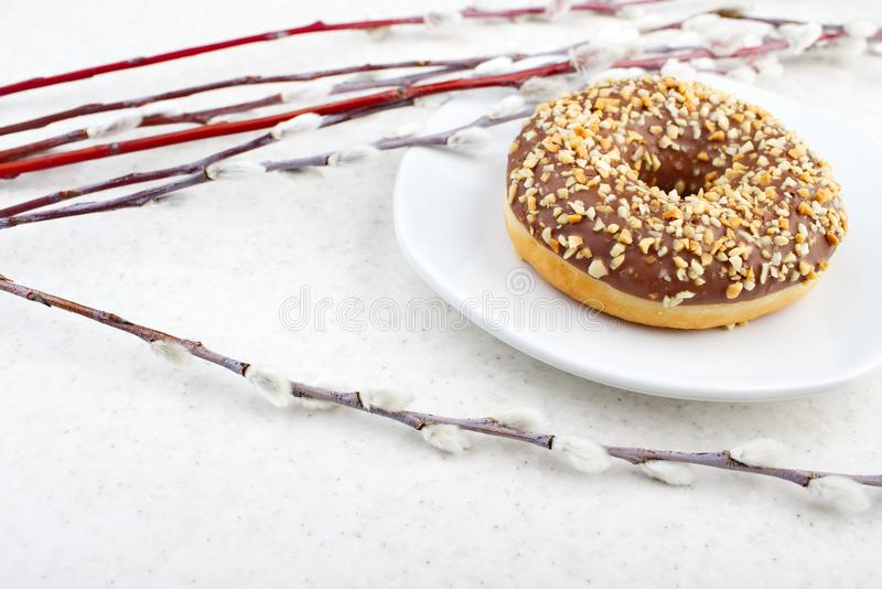 Doughnut και ιτιών κλάδοι στοκ φωτογραφίες
