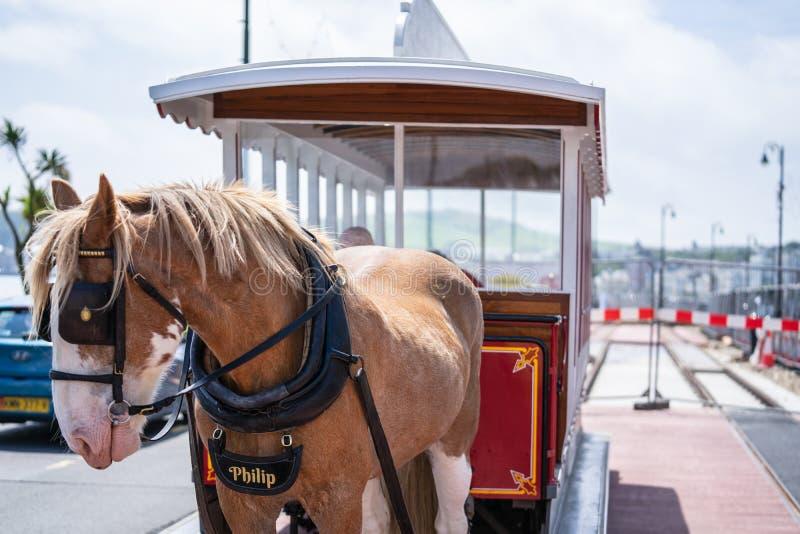 Douglas Bay Horse Tramway The Douglas Bay Horse Tramway en la isla del hombre imagen de archivo