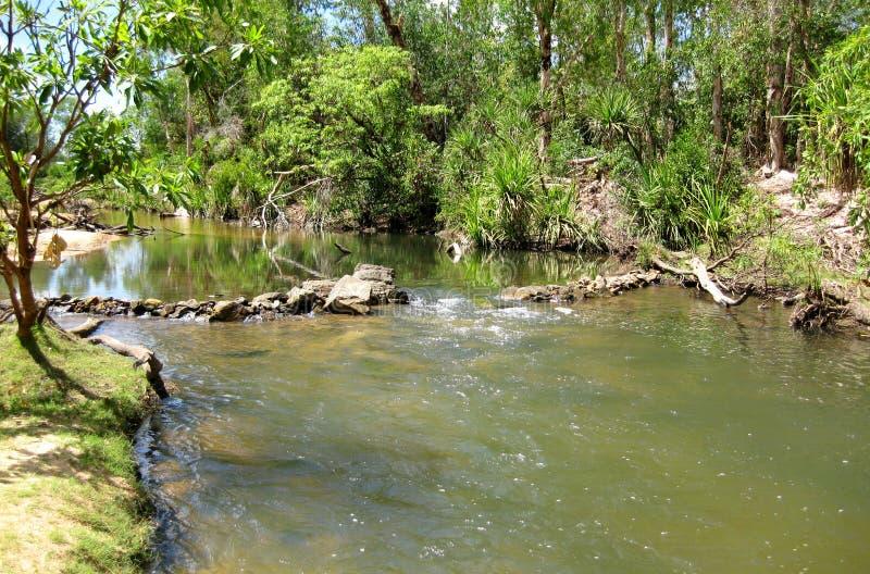 Douglas-heiße Frühlinge, Nordterritorium stockfotografie