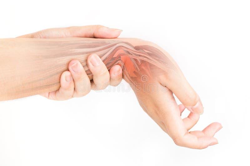 Douleur musculaire de poignet images stock