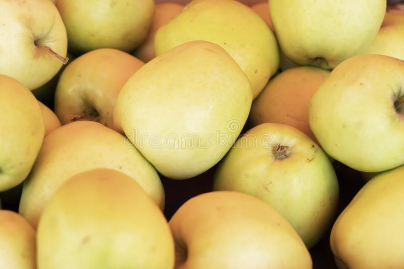 Dourado - maçãs deliciosas foto de stock