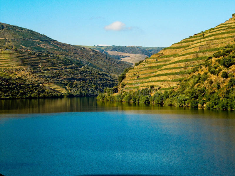 douro Porto rzeczny winniców wino fotografia stock