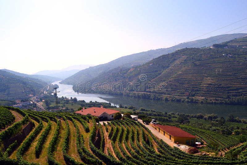 Douro river valley royalty free stock photo