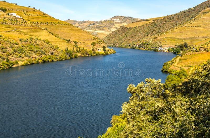 Douro rzeka zdjęcia royalty free