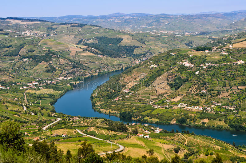 Douro Tal in Portugal stockfotografie