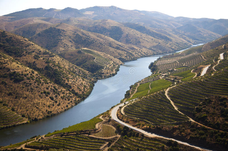 Douro Valley. Famous fields in Douro Valley, Portugal stock image