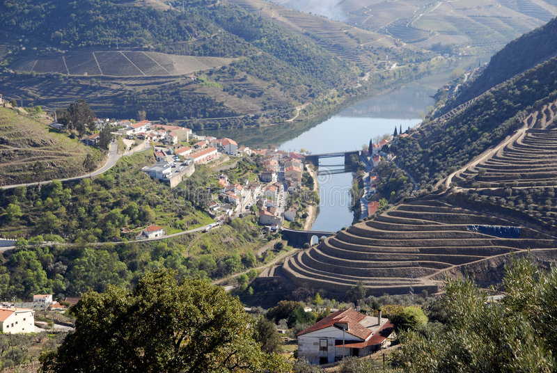 Douro Valley - mail Vineyard region in Portugal. royalty free stock photos