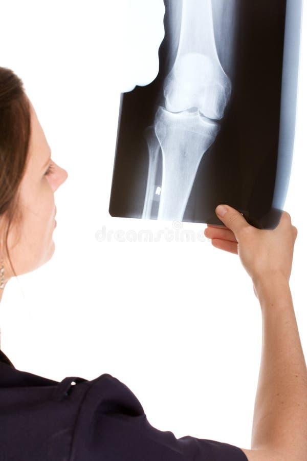 Doutor caucasiano fêmea que examina um raio X imagens de stock royalty free