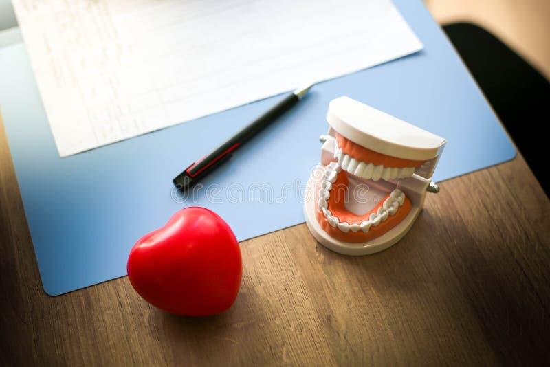 Doutor com equipamento vermelho do coração e dos cuidados médicos, dentes e boca foto de stock royalty free