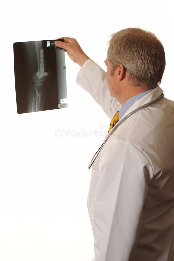 Doutor com raio X fotos de stock