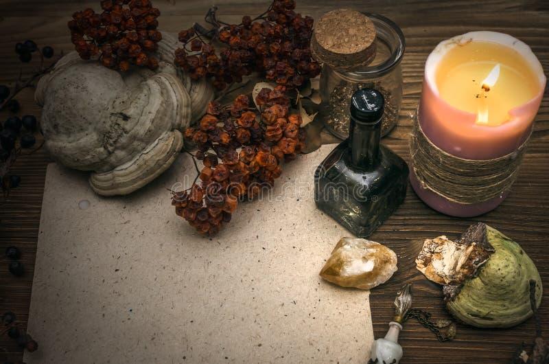 Doutor de bruxa shaman witchcraft Tabela mágica Medicina alternativa imagem de stock royalty free