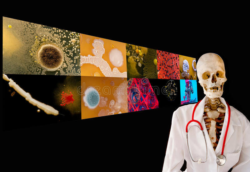 Doutor de esqueleto que dá uma leitura na doença. imagem de stock royalty free