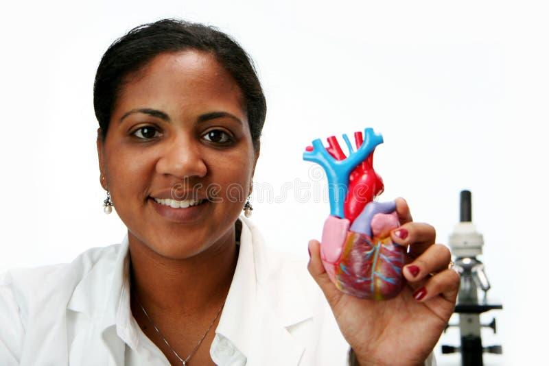 Doutor do coração imagens de stock royalty free