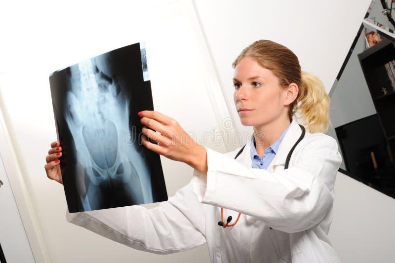 Doutor fêmea que examina uma imagem do raio X fotos de stock royalty free