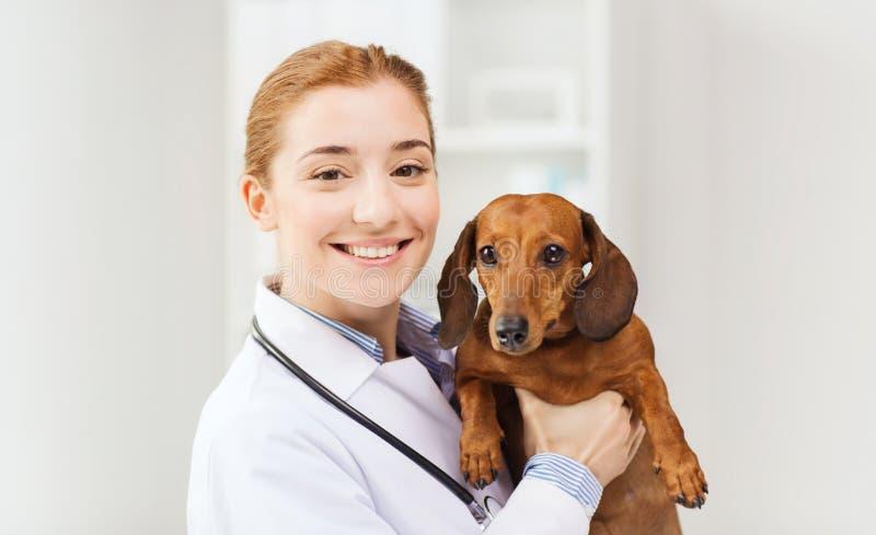 Doutor feliz com o cão na clínica do veterinário fotografia de stock royalty free