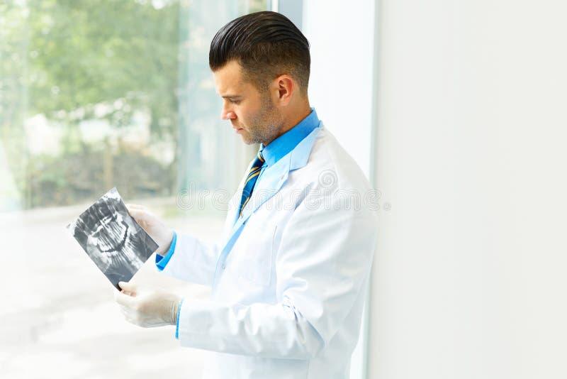 Doutor Looking do dentista no raio X no hospital foto de stock