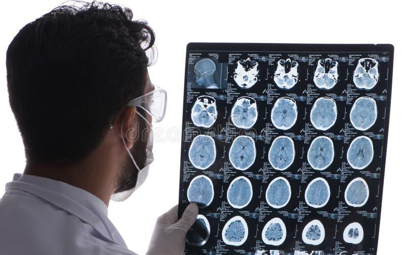 Doutor novo que olha as imagens do raio X isoladas no branco fotos de stock