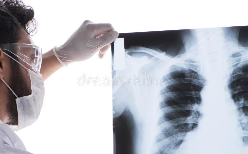 Doutor novo que olha as imagens do raio X isoladas no branco imagens de stock royalty free