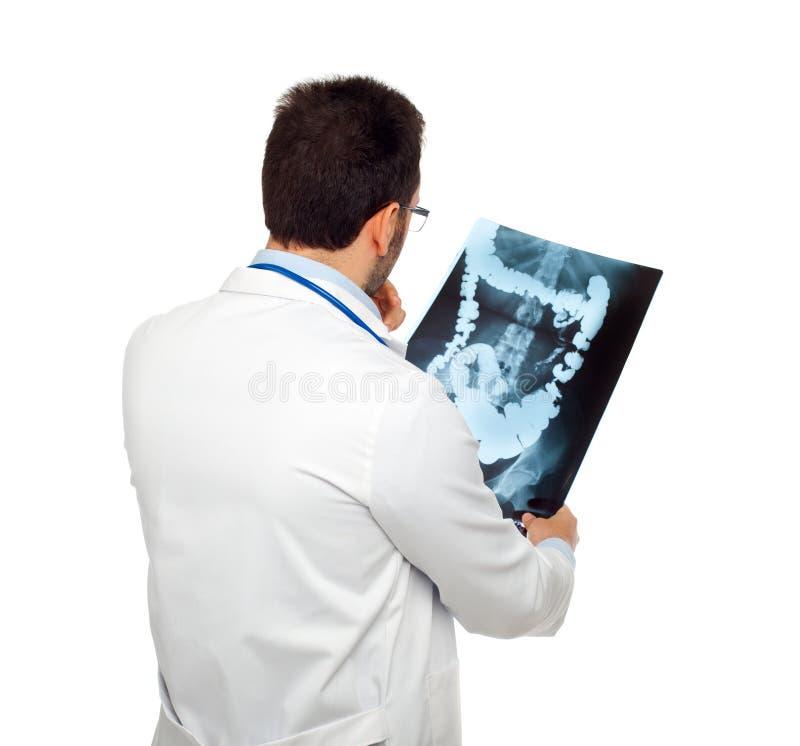 Doutor que consulta uma radiografia das entranhas imagem de stock