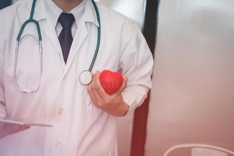 Doutor que guarda o coração vermelho no hospital médico, cuidados médicos, cardi fotografia de stock
