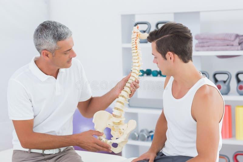 Doutor que mostra a espinha anatômica a seu paciente foto de stock