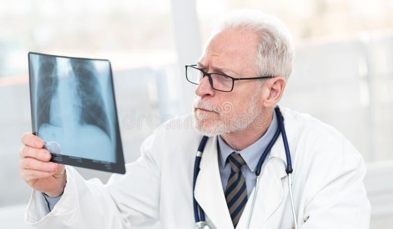 Doutor s?nior que olha o raio X fotografia de stock