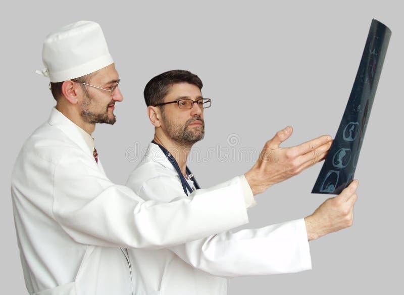 Doutores no fundo neutro