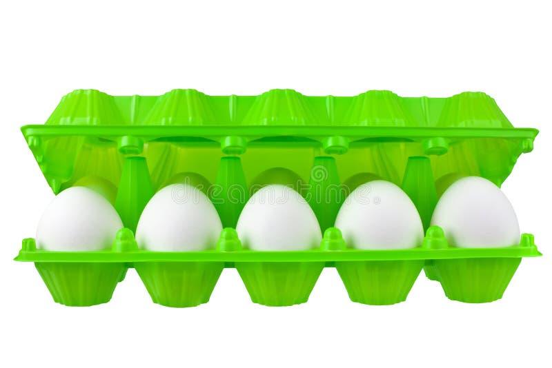 Douzaine oeufs blancs en paquet en plastique vert ouvert sur la vue franche étroite d'isolement par fond blanc images libres de droits