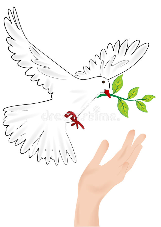 Dove. With a twig in its beak sitting down at the hand vector