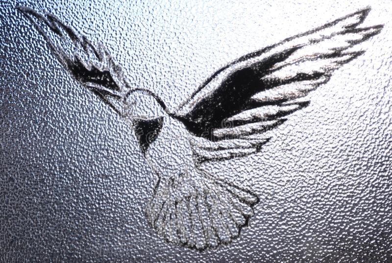 Download Dove stock photo. Image of spirituality, free, religious - 20585594