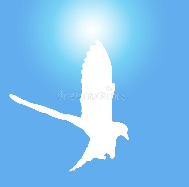 Dove 4 royalty free stock image