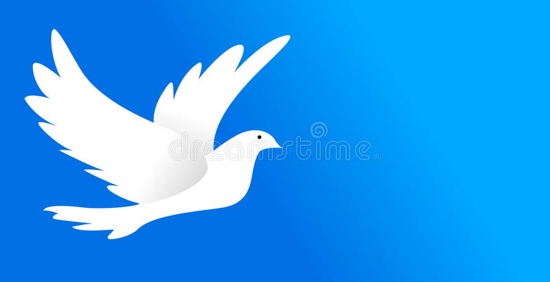 Download Dove stock vector. Image of graceful, isolated, fauna - 9509900