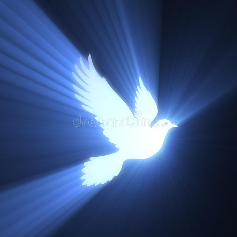Download Dove Bird Peaceful Light Flare Stock Illustration - Image: 27359948