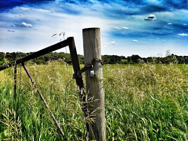 Dove il vento soffia fotografia stock