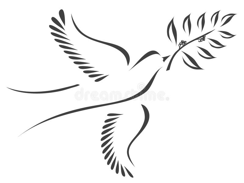 Dove with olive branch royalty free illustration