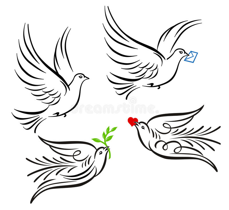 Dove, pigeon. Free flying white dove