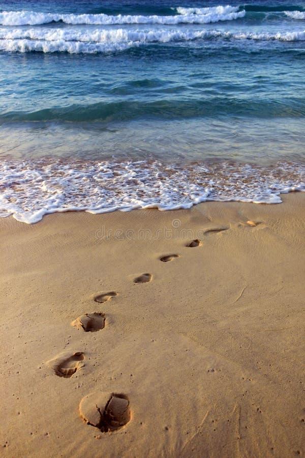 Dover Beach barbados photo stock