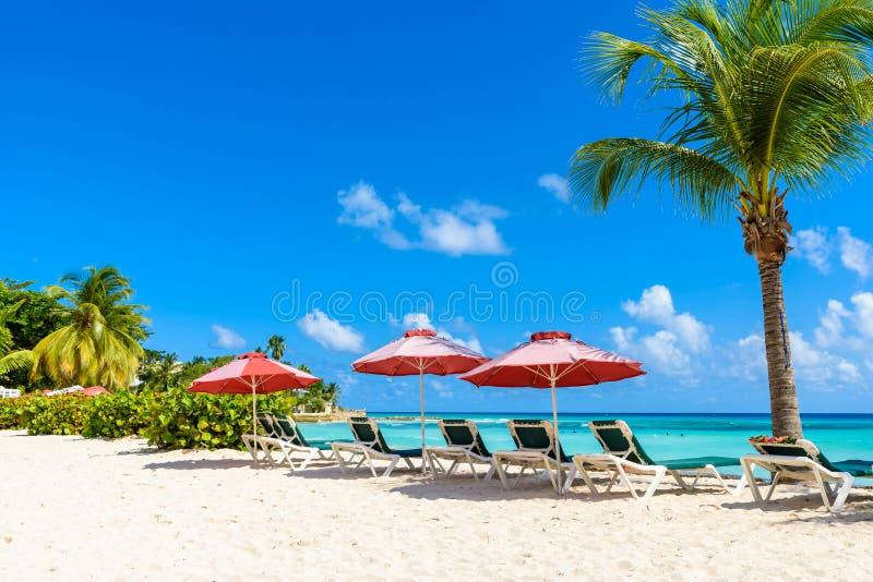 Dover Beach - tropisk strand på den karibiska ön av Barbados royaltyfri foto