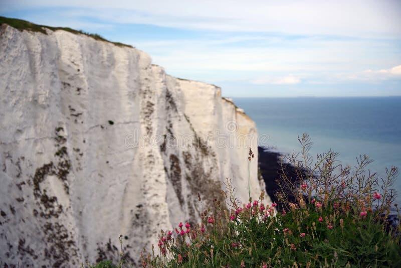 Dover White Cliffs, Engeland royalty-vrije stock afbeelding