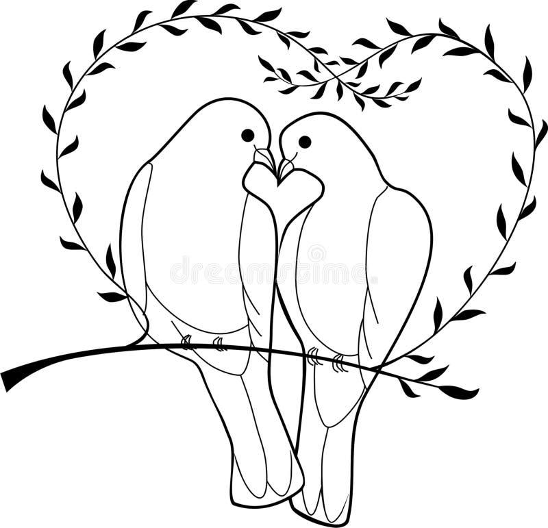 Doves vector illustration
