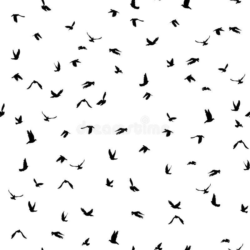 Free Doves And Pigeons Silhouette Seamless Pattern On White Background For Peace Concept And Wedding Design. Vector Royalty Free Stock Photos - 56931538